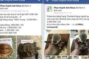 Xử lý nhiều trường hợp rao bán động vật hoang dã trên mạng