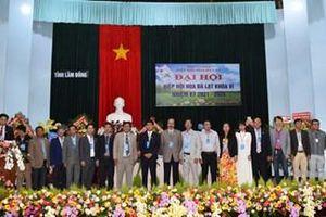 Thúc đẩy ngành hoa Đà Lạt và toàn tỉnh Lâm Đồng ngày càng phát triển