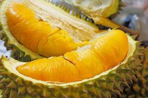 Điểm tên những loại trái cây đặc sản miền sông nước mê mẩn du khách