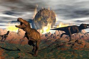 Rừng Amazon sinh ra nhờ vụ va chạm thiên thạch và khủng long