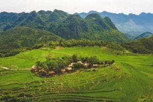 Những khu nghỉ dưỡng đưa du khách đắm mình giữa rừng cây tại Việt Nam