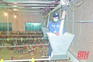 Ứng dụng cơ giới hóa trong sản xuất nông nghiệp