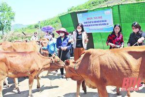 Huyện Mường Lát xây dựng các mô hình phát triển kinh tế