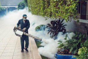 Mua phải thuốc diệt muỗi giả, muỗi chết, người cũng 'ngấm độc'