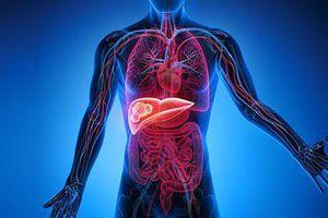 Ung thư gan thường 'tấn công' 4 kiểu người, mong rằng bạn không nằm trong số này