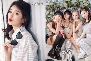 Fan đặt nghi vấn Suzy có 'mối liên hệ bí ẩn' với các thành viên BLACKPINK