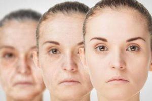Có thể làm chậm quá trình lão hóa bằng phương pháp tự nhiên
