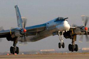 Chuyên gia giải thích lý do Nga không sử dụng máy bay ném bom Tu-95 ở Syria