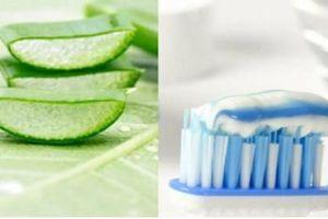 Bật mí 3 tips làm đẹp cho da bằng kem đánh răng đơn giản tại nhà