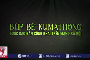 Kumanthong trở lại