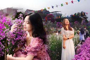 Teen Đà Nẵng, bạn đã check-in khu vườn 'tím lịm tìm sim' giữa lòng thành phố chưa?