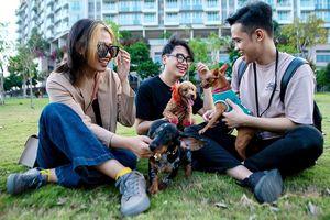 Công viên Sala thành điểm hẹn của hội yêu chó ở TP.HCM