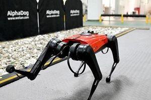 Chó robot sử dụng trí tuệ nhân tạo