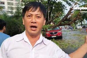 Tài xế bàng hoàng kể lại giây phút bị cây ngã đè bẹp ô tô tiền tỉ