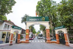 Nỗ lực vượt 'bão kép', Habeco nhắm vị trí số 1 thị trường