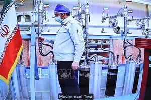 Iran tiếp tục các hoạt động làm giàu urani tại cơ sở hạt nhân Natanz