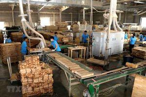 Sao Thái Dương lấn sân lĩnh vực chế biến sản phẩm gỗ