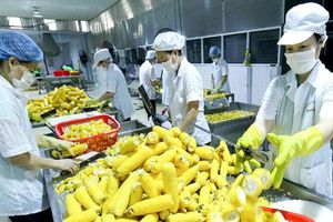 Nâng cao vị thế nông sản Việt Nam