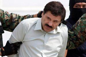 Cuộc đời ông trùm ma túy Mexico