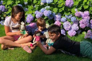 Khu vườn 100m2 tuyệt đẹp của mẹ Việt tại Hà Lan