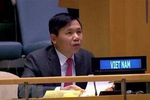 Việt Nam ủng hộ Chiến lược hỗ trợ khu vực Các hồ Lớn châu Phi