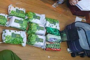 Triệt phá đường dây mua bán ma túy dạng 'trà ô long', 'đông trùng'