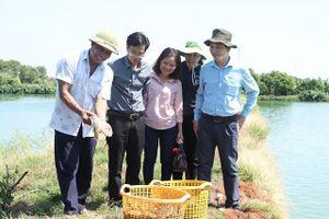 Quy hoạch trong nông nghiệp: Hướng đến sản xuất bền vững