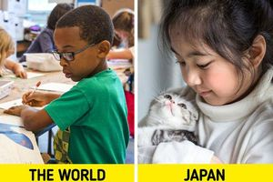 Sáu bí mật giúp hệ thống giáo dục Nhật Bản hiệu quả nhất thế giới