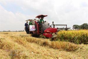 Du lịch nông nghiệp ở ĐBSCL: Từng bước định vị thương hiệu