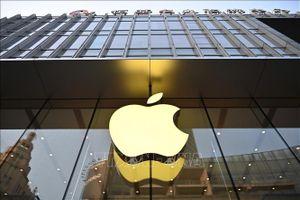 Apple ấp ủ sản phẩm kết hợp loa HomePod, FaceTime và Apple TV