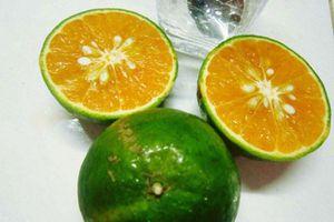 4 thực phẩm 'thần thánh' đồng hành cùng làn da sáng đẹp