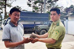 Lâm Đồng: Giải cứu tê tê quý hiếm trước khi lên bàn nhậu