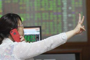 Leo dốc thành công nhờ lực đẩy từ HPG và MSN, VN-Index có thêm gần 8 điểm