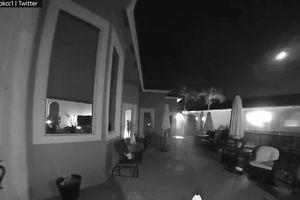 Sao băng thắp sáng bầu trời Florida, Mỹ