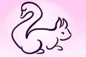Trắc nghiệm vui đoán tính cách: Bạn thấy con sóc hay thiên nga?