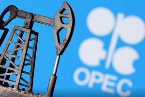 Triển vọng tích cực về nhu cầu dầu thế giới