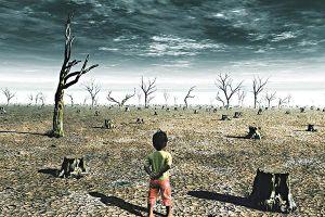 Khí hậu biến đổi tác động đến sức khỏe thế nào dưới góc nhìn y lý phương Đông?