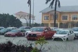 Xác minh vụ đại lý Toyota bán xe từng bị ngập nước