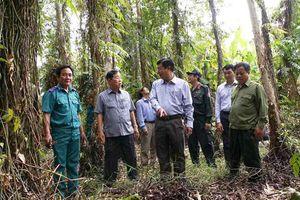 Mưa trái mùa kèm sét đánh tăng nguy cơ cháy rừng ở Cà Mau