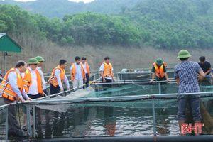 Vũ Quang mong muốn nhân rộng mô hình nuôi cá trong lòng hồ Ngàn Trươi
