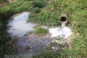 Thanh Hóa: Phát hiện thêm một cơ sở xả nước thải chưa xử lý ra sông Mã