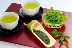 Uống nước trà xanh để giảm béo bụng cấp tốc