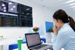 Thị trường đỏ lửa, cổ phiếu đầu cơ tiếp tục 'lên hương'