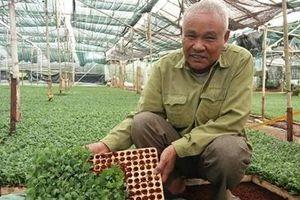Từ người làm thuê thành nhà nông tiêu biểu
