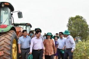 Bộ trưởng Bộ NN-PTNT Lê Minh Hoan thăm Nông trường Thành Long