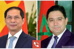 Bộ trưởng Ngoại giao Bùi Thanh Sơn điện đàm với Bộ trưởng Ngoại giao Morocco Nasser Bourita