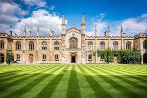 10 trường đại học đào tạo môn Vật lý hàng đầu thế giới