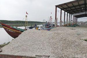 Ô nhiễm tại cảng cá Lạch Vạn Nghệ An - S.O.S