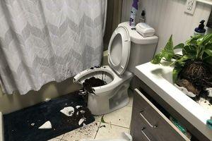 Những sự cố oái oăm trong nhà khiến chủ nhân 'phát điên'