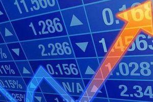 Doanh nghiệp niêm yết báo lỗ, cổ phiếu vẫn lập đỉnh